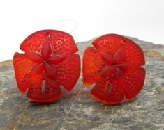 These are so unique! Glass sand dollar cabinet knobs or pulls. Available in several colors, but this red is striking! Turtle Beach, Recycled Furniture, Unique Furniture, Star Of Bethlehem, Cabinet Knobs, Cabinet Hardware, Glass Knobs, Glass Kitchen, Beach Cottages