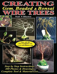 Creating Gem, Beaded & Bonsai Wire Trees: Step by Step Instructions, 400 Photos & Drawings by Sal Villano, http://www.amazon.com/dp/B00F4CY36G/ref=cm_sw_r_pi_dp_1b.3sb0A69X7F