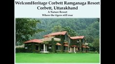 Staying in Ramganga resort in Jim Corbett National Park fetches a climax form of wildlife tourism and quiet moments are unforgettable.