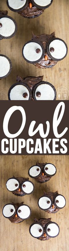 Cupcakes - These adorable owl cupcakes are simple to make with just a few extra toppings and are so cute!Owl Cupcakes - These adorable owl cupcakes are simple to make with just a few extra toppings and are so cute! Owl Cupcakes, Baby Shower Cupcakes, Cupcakes Fall, Birthday Cupcakes, Halloween Cupcakes, Baking Cupcakes, Cake Pops, Yummy Treats, Sweet Treats