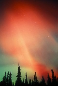 pinterest.com/fra411 #aurora #borealis - Aurora Borealis or Northern Lights, Alaska, USA.