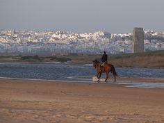 Beaches of Costa de la Luz (Spain) 'Habitual Costa del Sol–goers may  not have heard of Barbate, Zahara de  los Atunes or El Palmar, as Andalucía's less known west-facing Atlantic coast...