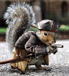 THis crazy little guy is armed and ready!!