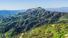 Gorgeous Mount Hollywood - From our Hollywood tour in Los Angeles https://friendlylocalguides.com/los-angeles/tours/hollywood-tour #mountain #hollywood #climbing #blue #park #green #griffith #morning #clear #sky #beautiful #scenic #hiking #hike #hikes #spring #california #losangeles #la #visit #usa #city #калифорния #лосанджелес #friendlylocalguides