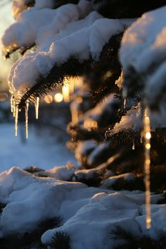 Layers of snow and icicles