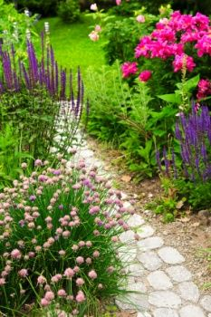 country flowers with stepping stone path