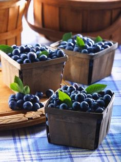 Fresh blueberries in boxes