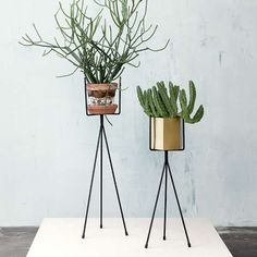 Love the tripod and the brass container. Ferm Living Plant Stand