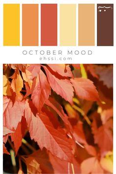 Spring Color Palette, Warm Colour Palette, Warm Colors, Color Palate, Colours, Rustic Color Palettes, Rustic Colors, Color Harmony, Design Seeds