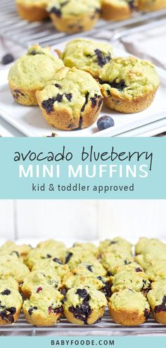 These Avocado and Blueberry Mini Muffins are the perfect healthy snack to have o. - Baby Led Weaning - Best Ever Muffins Recipes Mini Muffins, Mini Blueberry Muffins, Blue Berry Muffins, Blueberry Recipes For Baby, Healthy Snacks To Buy, Healthy Toddler Snacks, Clean Eating Snacks, Healthy Fats, Healthy Muffins For Toddlers