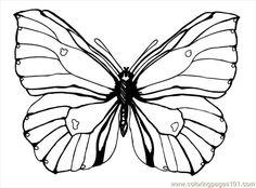 Butterfly92