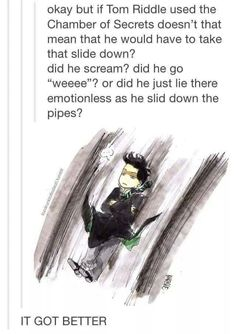 Tom Riddle aka Lord Voldemort -  The boy who did not scream on the slide