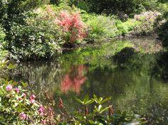 Stone bridge photo - Houghton Garden, Newton, MA