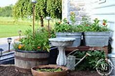 WHAT IS kitchen garden Even if you dont have a garden you can always tuck some herbs and annuals in a little kitchen herb garden Farmhouse Landscaping, Farmhouse Garden, Garden Cottage, Garden Landscaping, Farmhouse Style, Farmhouse Decor, Modern Farmhouse, Rustic Decor, Privacy Landscaping