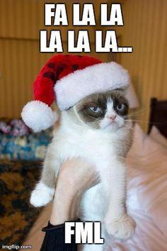 Grumpy Cat Christmas - http://www.viralbuzzspot.com/grumpy-cat-christmas/