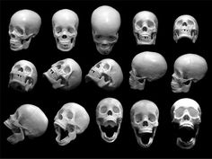 http://www.gomediazine.com/wp-content/images/2008/09/free-skull-photos-preview.jpg