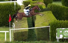 12 of the world's biggest rider frighteners: Double hedge, Merano racecourse, Italy. See all 12 fences at http://www.horseandhound.co.uk/features/scary-horse-fences-473630#y3ukjlyDpCYovzYJ.99