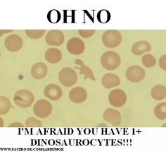 Borrowed from LabHumor on Facebook to share here If you laughed then you might be a LabTech!