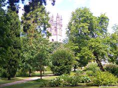 Magdalen College seen from the Botanic Garden, Oxford, England