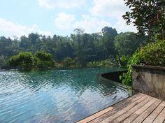 Hanging Gardens Ubud: The pool
