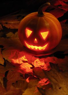 Jack O' Lantern - Halloween Dekoration Spooky Halloween, Retro Halloween, Halloween Images, Holidays Halloween, Halloween Pumpkins, Halloween Crafts, Halloween Cookies, Halloween Decorations, Halloween Countdown