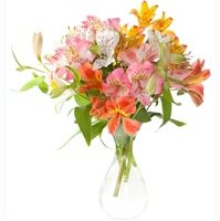 Beautiful blooms of 9 colorful alstroemerias are festively combined in a nice floral composition for delivery to Ukraine.