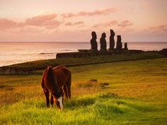 These are the best places to photograph around the world so get snap happy in these cinematic locations. Plan your trip Top Place, The Good Place, Easter Island Statues, Plan Your Trip, Live Life, Monument Valley, Places To Go, Beautiful Places, Photographs
