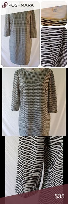"""Sandra Darren 3/4 Sleeve Shift Dress, Sz 16 This is a pre-owned in new condition Sandra Darren shift dress in size 16.  3/4 sleeves, round neckline.  No zip, pullover style. Dress is ivory, black and part mesh.  Fully lined in ivory 100% poly.  Dress is 93% poly, 4% spandex and 3% nylon. Machine wash on HandWash cycle. When flat on front side, underarm to underarm measures 20"""" across, waist 19"""", hip 22"""" and total length is 36 inches. In new condition and ready to wear! Sandra Darren Dresses"""