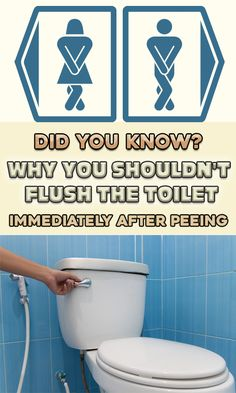 Reasons why you should not flush the toilet after peeing! (many do not know this…) - Natural Cures Not Medicine Health Tips, Health Care, News Health, Health Facts, Date Night Recipes, Areas Of Life, Homeopathy, Natural Medicine, Herbal Medicine