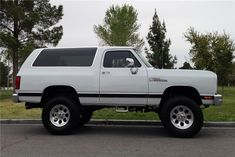 1989 DODGE RAMCHARGER CUSTOM SUV - Side Profile - 152120