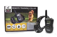 Rechargeable Remote Control Dog Training Collar with Vibration, Shock, Tone. Waterproof, Submersible, Safe Behavior, No Jump, No Bark, Sport, Obedience, 900  Feet, Downtown Pet Supply -- See this great image  : Dog Training and Behavior Aids