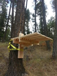 Timber frame tree stand for hunting. All it needs now is a camouflage job! Tree House Playground, Backyard Playground, Outdoor Seating, Outdoor Spaces, Backyard Treehouse, Hunting Stands, Simple Tree House, Dog Tree, Tree House Plans