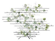 Sou Fujimoto Architects energy forest