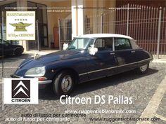 Citroen DS Pallas per Cerimonie