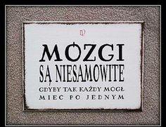 #mozg