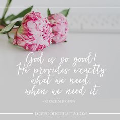 Love God Greatly -  God is so good! He provides exactly what we need, when we need it. Kristen Brann http://lovegodgreatly.com/his-perfect-providence/