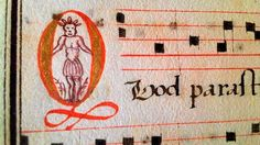 A tiny drawing of a kangaroo curled in the letters of a 16th-century Portuguese manuscript could rewrite Australian history.  Read more: http://www.smh.com.au/entertainment/books/16thcentury-manuscript-could-rewrite-australian-history-20140115-30vak.html#ixzz2sb6QqZSA