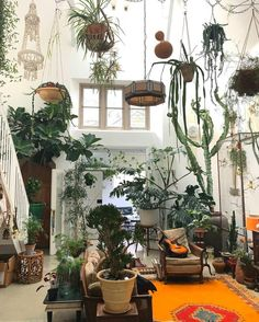 some serious plant goals some serious plant goals The post some serious plant goals appeared first on Wohnung ideen. Room With Plants, House Plants, Plant Rooms, Interior Plants, Interior And Exterior, Interior Garden, Plantas Indoor, Decoration Plante, Plant Aesthetic