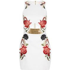 Sass & Bide Arm Yourself Embroidered Dress ($450) ❤ liked on Polyvore featuring dresses, vestidos, short dresses, robes, ivory, embroidery dress, winter white dress, cut out mini dress, fitted dresses and embroidered cocktail dress