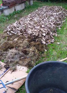 Lasagna-Gardening: Im Herbst die nächste Gartensaison vorbereiten - foolfashion