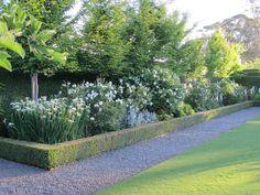 Stonefields Private Tours - Paul Bangay - Stonefields the Farmhouse & Private Tours Back Gardens, Outdoor Gardens, Baumgarten, Farmhouse Garden, Australian Garden, Garden Landscape Design, Garden Pool, Gras, Outdoor Landscaping