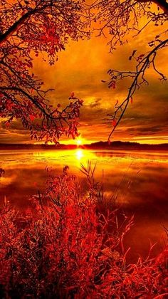 Nature Pictures, Beautiful Pictures, Pics Of Nature, Beautiful Images Of Nature, Lake Pictures, Beautiful Nature Wallpaper, Nature Nature, Landscape Pictures, Smoke Bomb Photography