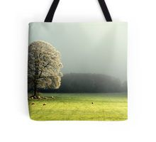 """LIGHT THROUGH THE MIST"" Tote Bag"