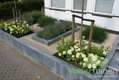 create something like this off the deck to walk into the garden.