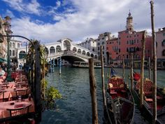 The Rialto Bridge and Gondolas on the Grand Canal in Venice Photographic Print by Chris Hill at Art.com