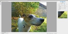 CS6 top tip: Adaptive Wide Angle filter in Photoshop CS6   Official Advanced Photoshop Blog
