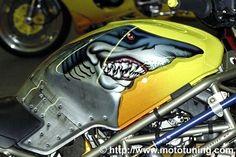 Bad Shark - Moto Tuning.com
