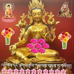 🐚 #Dharma #TibetanBuddhism . . ༜~࿂~༜~࿂~༜~࿂~༜~࿂~༜~࿂~༜~࿂ #TibetanPortraits #Phayul #Tibet #Tibetan #Kham #UTsang #Amdo #TibetanNuns #TibetanWomen #TibetanMen #TibetanMonks #Lhasa #TibetanKids ༜~࿂~༜~࿂~༜~࿂~༜~࿂~༜~࿂~༜~࿂ ☀️🐚 #DalaiLama #Karmapa #Buddha #Buddhism #Himalaya #Faith #Prayers #IGTibet_Family #FreeTibet #Qinghai #Sichuan #Xizang #Gansu #Buddhist #Native