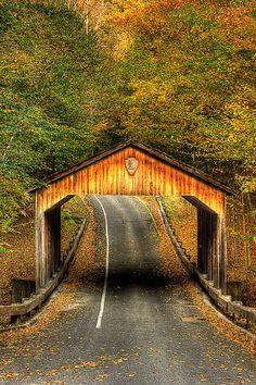 Road through Sleeping Bear Covered Bridge, Sleeping Bear National Lakeshore, Michigan Beautiful World, Beautiful Places, Old Bridges, Old Barns, Covered Bridges, West Virginia, Places To See, The Good Place, Wisconsin