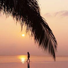 Maldives-Amilla-Fushi-Luke-Shadbolt-68